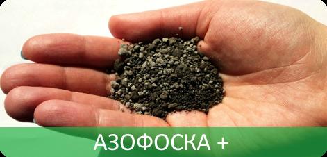 И поставка минеральных удобрений